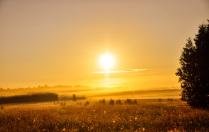 Навстречу к солнцу
