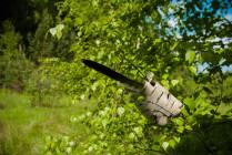 Метка в лесу