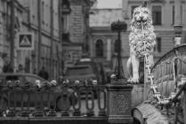 Лев и голуби