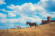 Мираж в Крымской степи