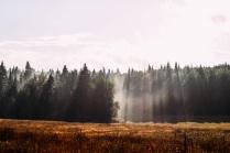 Дыхание земли