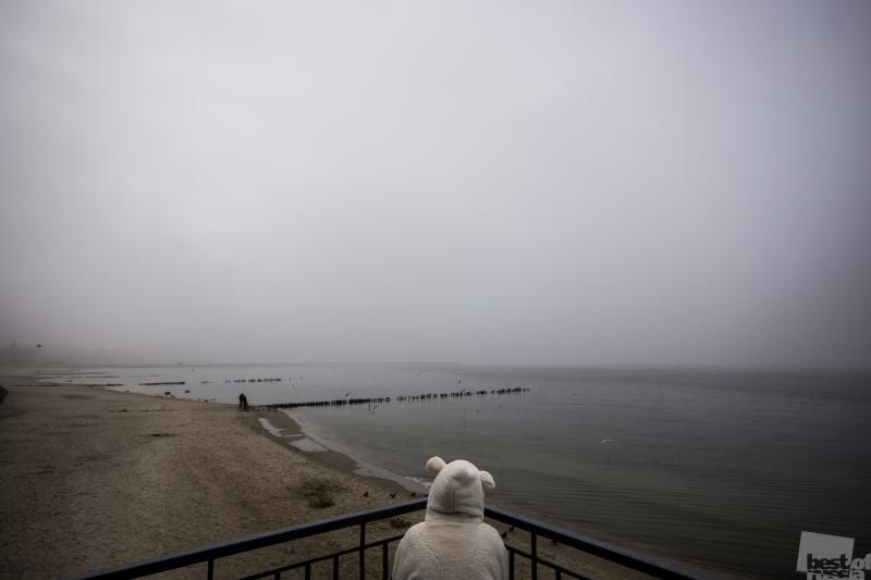 Тоска в тумане