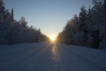Солнце вышло на дорогу