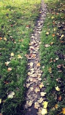 От лета к осени