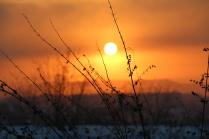 Зимний закат Сибири