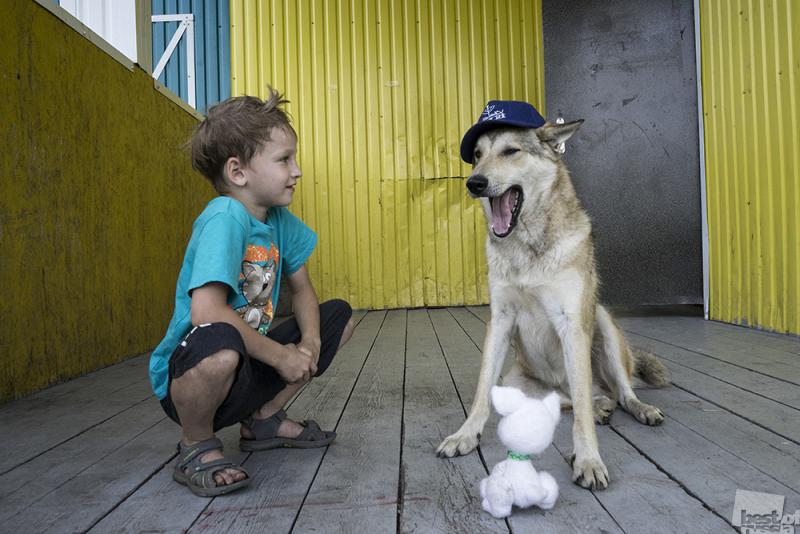 Самое большее счастье -- иметь друга