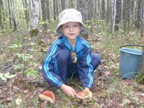 мои первые грибы