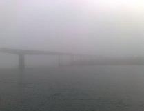 Туман на Дону
