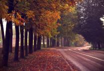 Осенний Смоленск