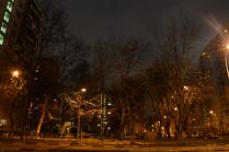 Ночной двор