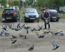 Ее птицы счастья - голуби!