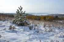 Покровский снег