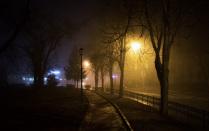 Ночной сквер в тумане.
