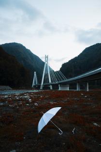 Белый Зонтик рядом с Вантовым мостом