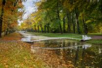 Мостик между   летом и осенью