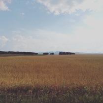 Осенняя Сибирь