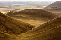 Долгие горы