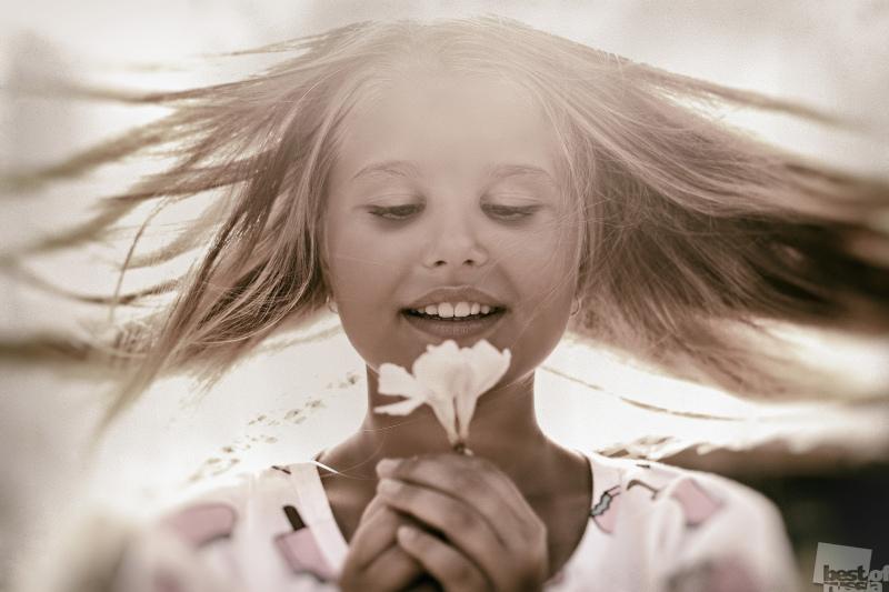 Цветок счастья