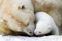 Герда с медвежонком