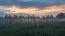 Туманный закат