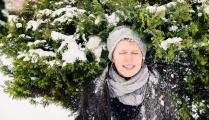 Снежная шутиха