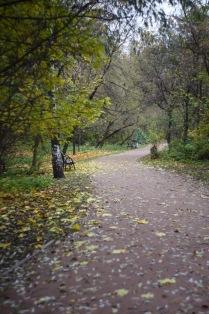 Московская осень в парке