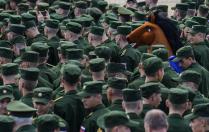 Просто конь
