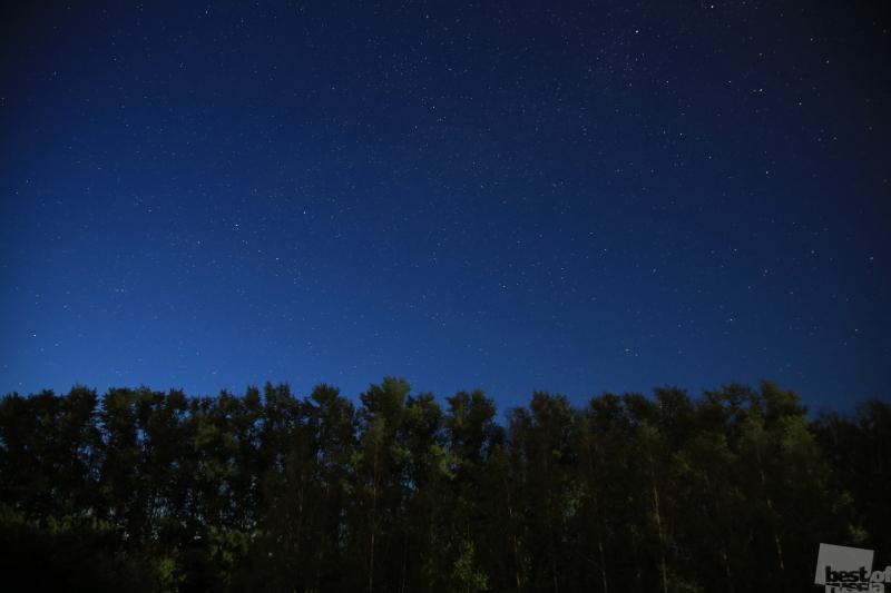 Звездная ночь в поле