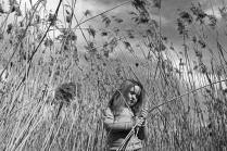 В тростнике