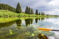 Скользим по зеленой реке