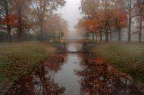 туманным утром в парке Пушкина
