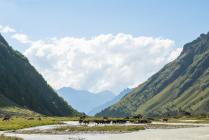Сердце Кавказа