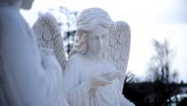 Застывший ангел