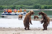 Медвежьи танцы