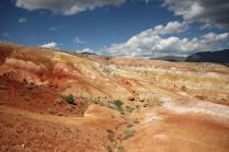 Марсовые поля