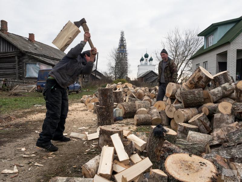 Березовые дрова на зиму
