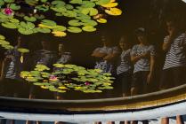 Артековцы в Никитском ботаническом саду