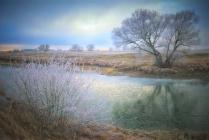 Ранняя зима в заливных лугах Оки