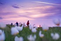Весна в Калмыкии