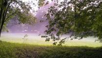 Синий туман похож на обман