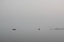 Утро. Туман. Безмятежность.
