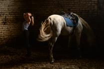 Конюшня в ЦСП по конному спорту