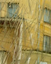 Желтые стены любимой тюрьмы