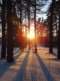 Янтарный зимний вечер