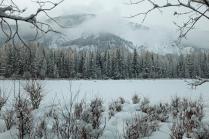 Околдованный зимою лес стоит