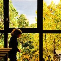 осень любит
