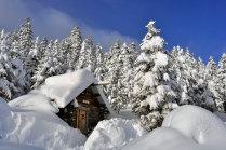 """""""....там снег,там столько снега,чтоб если я б там не был,я не поверил,что бывает столько снега...,"""