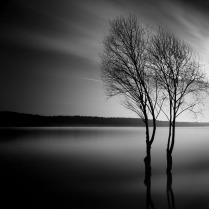 Тихий рассвет