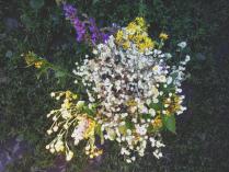 Дарите девушкам цветы