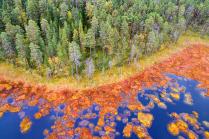 Яркие Краски Северной Природы